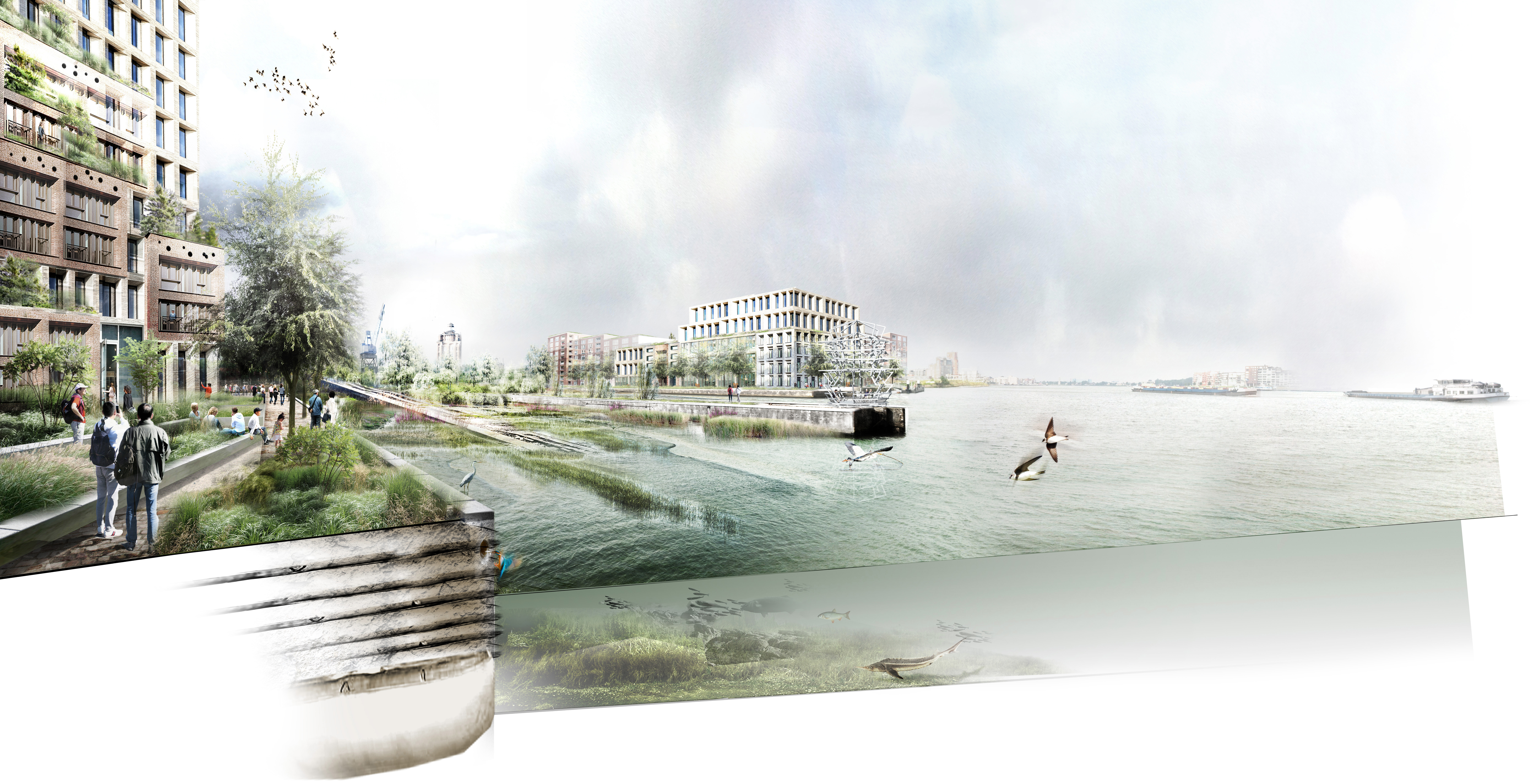 Werven Park Dordrecht 3