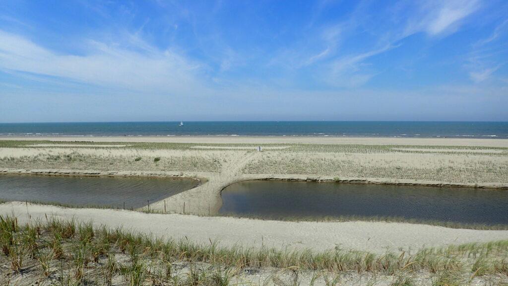 Dune development Hondsbossche Dunes