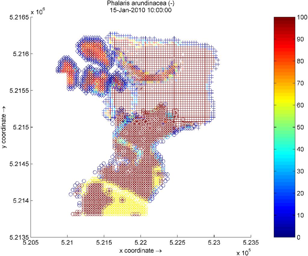 biogeomorphological modelling result