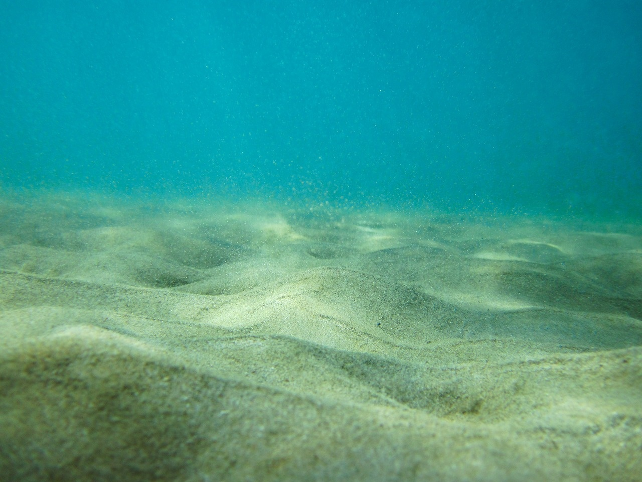 Bedforms under water