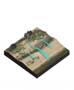 enhancing dune dynamics BwN
