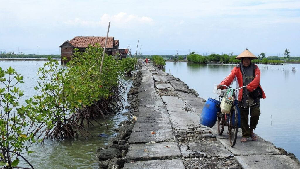 Subsidence and flooding affect daily life in Bedono village.